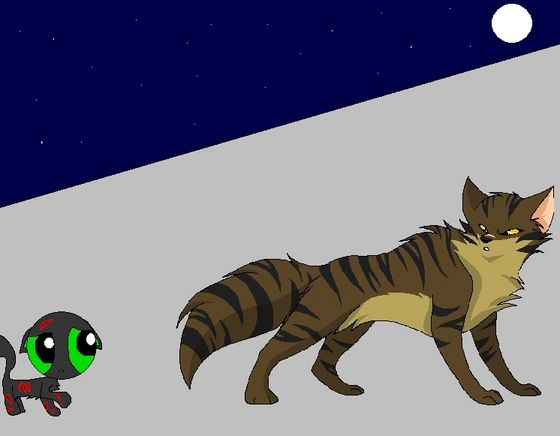"""""""Lets go, kit!"""" dicho Tigerclaw pearing at Buttercup's wounds."""