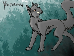 Yellowfang, again. THIS IS A BAD PICTURE OF HER! O.o