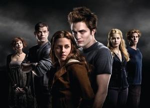 Twilight bunch