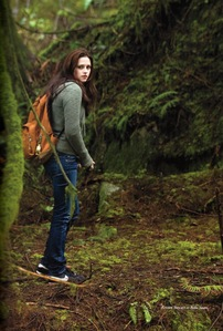 """Bella searching for """"their"""" meadow"""