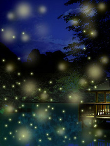 10 million fireflies