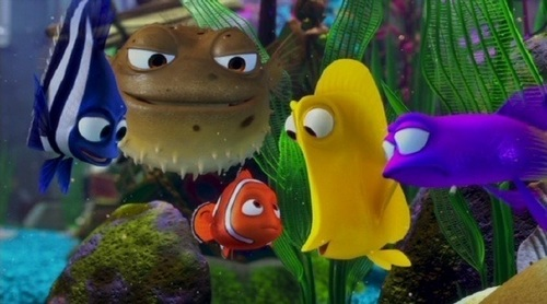 Nemo and his headquarters Group at the FishTank