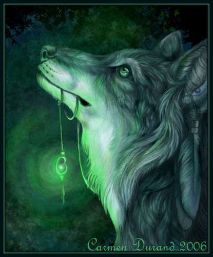The wolf Shaman and her Amulet