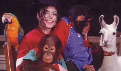 There is no remedy for love, but to l'amour more... <3 U MJ