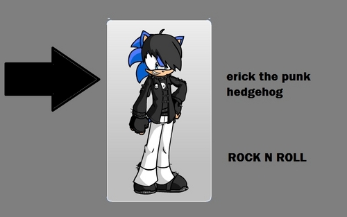 Erick The Punk Hedgehog