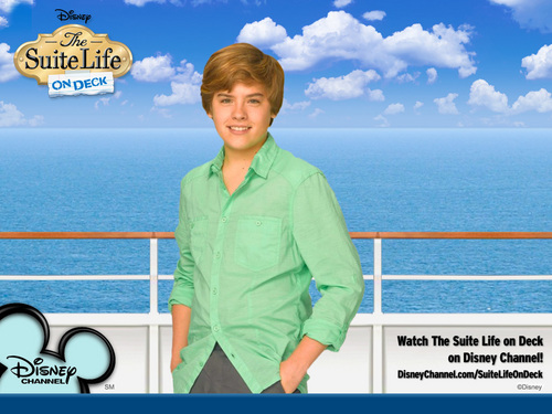 suite life on deck season 2!!