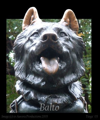 balto new york