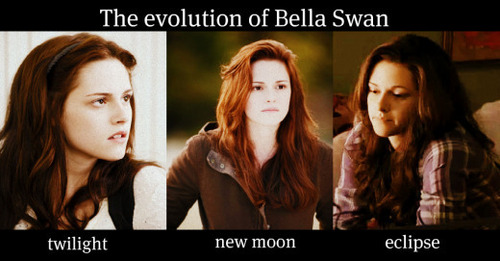 The Evolution Of Bella