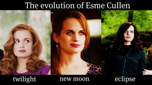The Evolution Of Esme Cullen