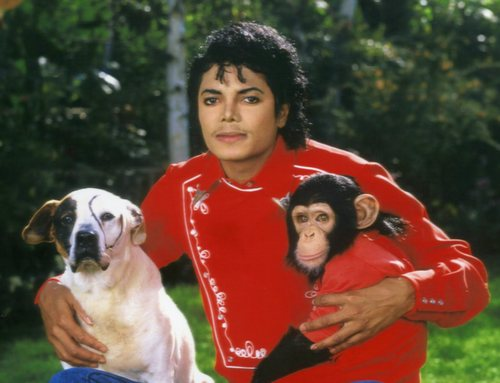 MJ with 動物