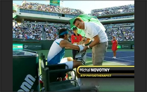 novotny and del potro