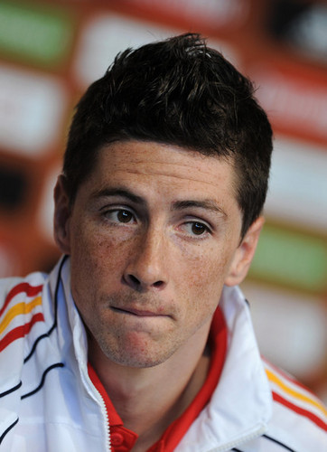 Fernando Torres - June 19 - Press Conference