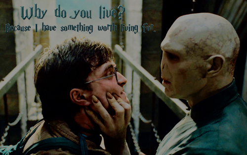 Harry & Voldemort in Deathly Hallows