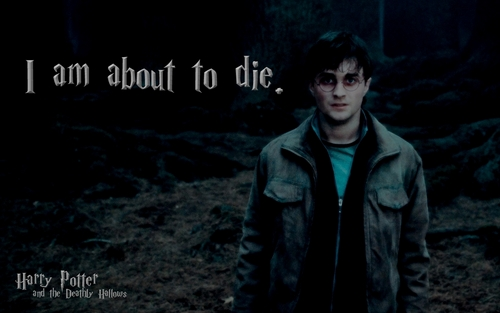 Harry in Deathly Hallows