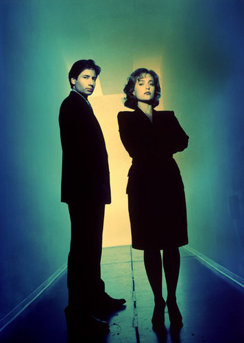 http://images2.fanpop.com/image/photos/13600000/The-X-Files-the-x-files-13610449-356-500.jpg