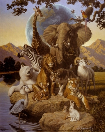 Earth and Animals