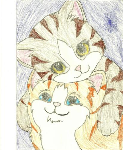 cloudfire and robinpelt