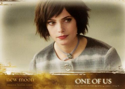 Alice Cullen / New Moon
