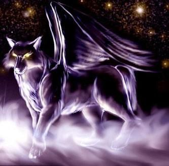 Winged Wolves images Winged wolf wallpaper and background ...