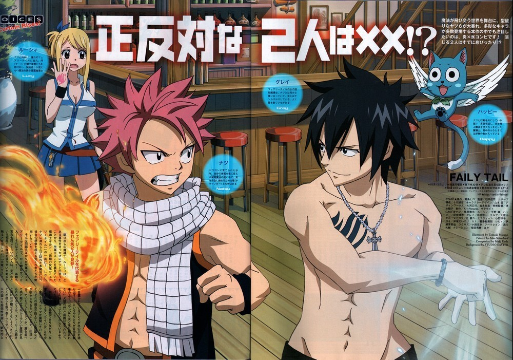 http://images2.fanpop.com/image/photos/8700000/Fairy-Tail-fairy-tail-8792416-1000-701.jpg