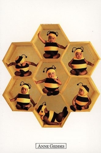 Babies Bees
