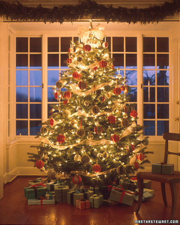 Martha Images Christmas Tree Wallpaper And Background Photos