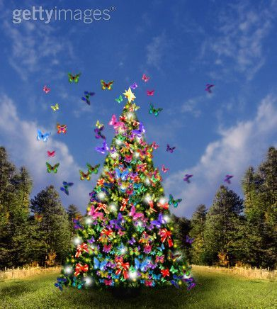 Butterfly Christmas Tree For Susie <3