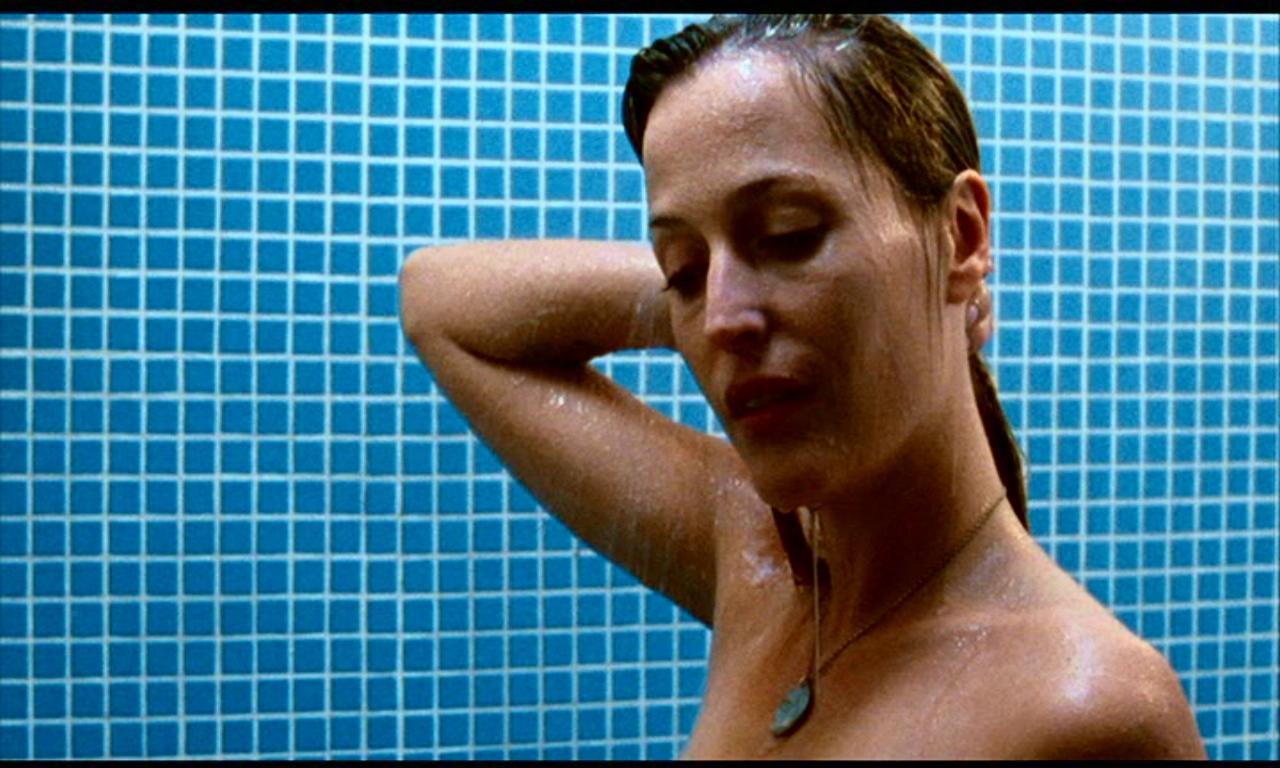 Anderson Gillian Nue gillian in straightheads/closure - gillian anderson image