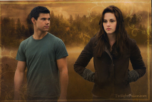 New Moon Trading Cards