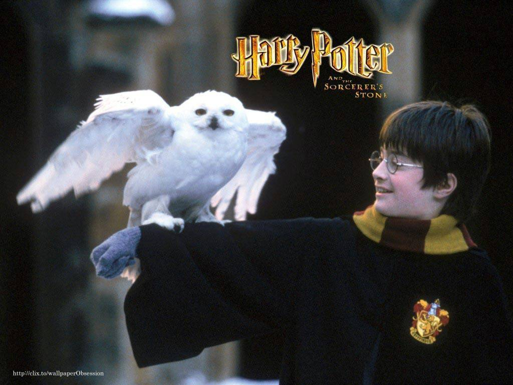 Harry Potter And The Sorcerer S Stone Harry James Potter