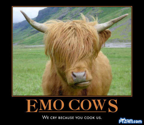 Emo Cow