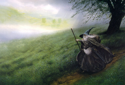 Gandalf fã art