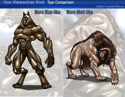 Wolf-man/Man wolf: The difference
