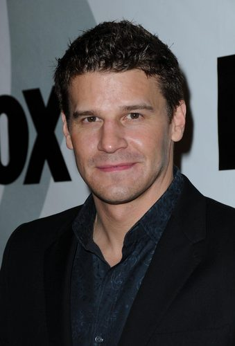 David Boreanaz @ 2009 여우 Winter All-Star Party