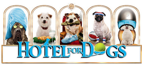 hotel for dogs header