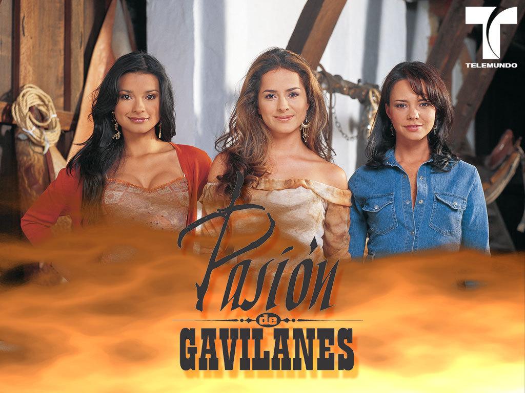 http://images2.fanpop.com/images/photos/4400000/Pasion-de-Gavilanes-telenovelas-4411665-1024-768.jpg
