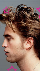 rob in dossier
