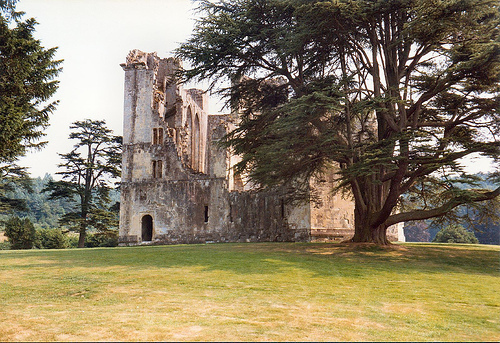 Old Wardour istana, castle - scenery