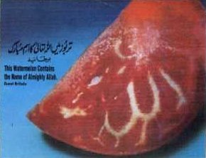 Allah's name in nature