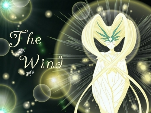 The Windy