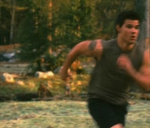Jacob!!!! in new moon