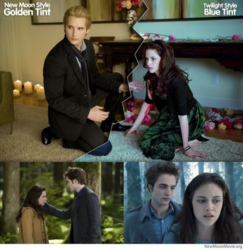 The differents in Twilight and New Moon