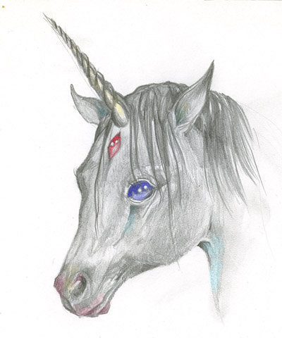 Beautiful unicorn drawing