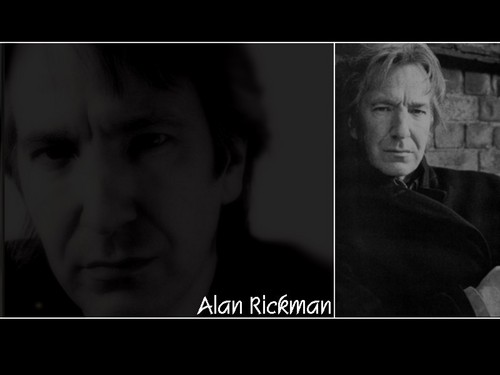 Alan Rickman/wallpapers