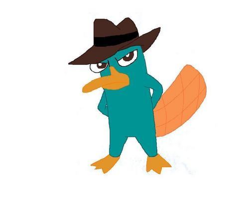 My drawing of Perry
