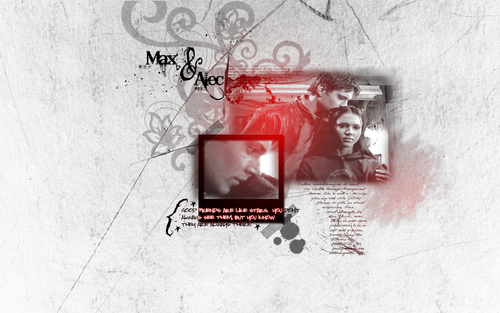 Alec and Max - Friendship