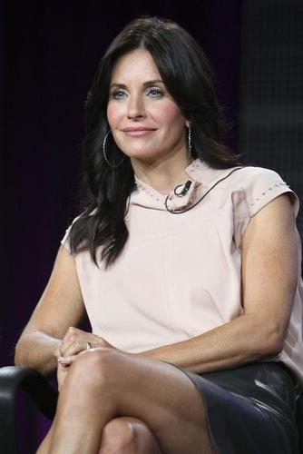Cougar Town Cast at ABC's TCA .