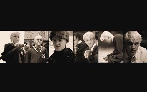 Draco Malfoy Draco Malfoy Wallpaper 13068294 Fanpop