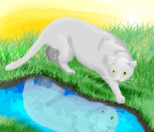 Silverstream Reflects