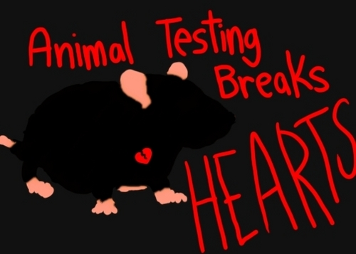 Stop Testing On animaux